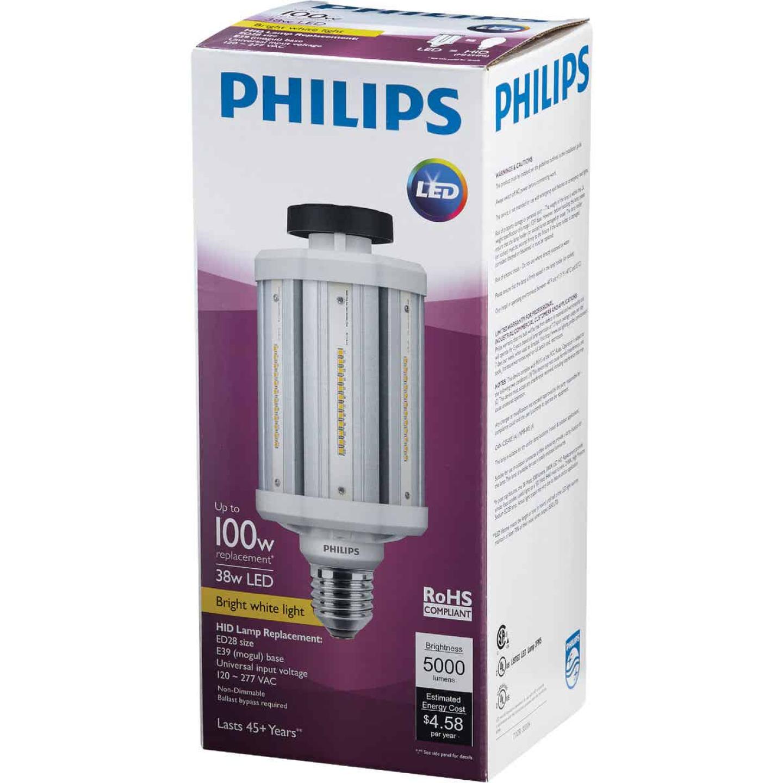 Philips TrueForce 38W Clear Corn Cob Mogul Base LED High-Intensity Light Bulb Image 3