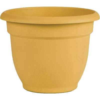 Bloem Ariana 8.8 In. H. x 8 In. Dia. Plastic Self Watering Earthy Yellow Planter