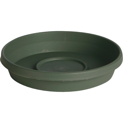 Bloem Terra Living Green 8 In. Plastic Flower Pot Saucer