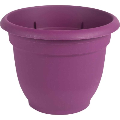 Bloem Ariana 13.75 In. H. x 16 In. Dia. Plastic Self Watering Passion Fruit Planter