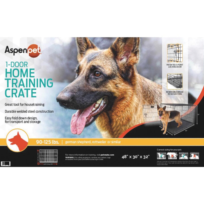 Petmate Aspen Pet 29.3 In. W. x 31 In. H. x 43.4 In. L. Heavy-Gauge Wire Indoor Training Dog Crate Image 2